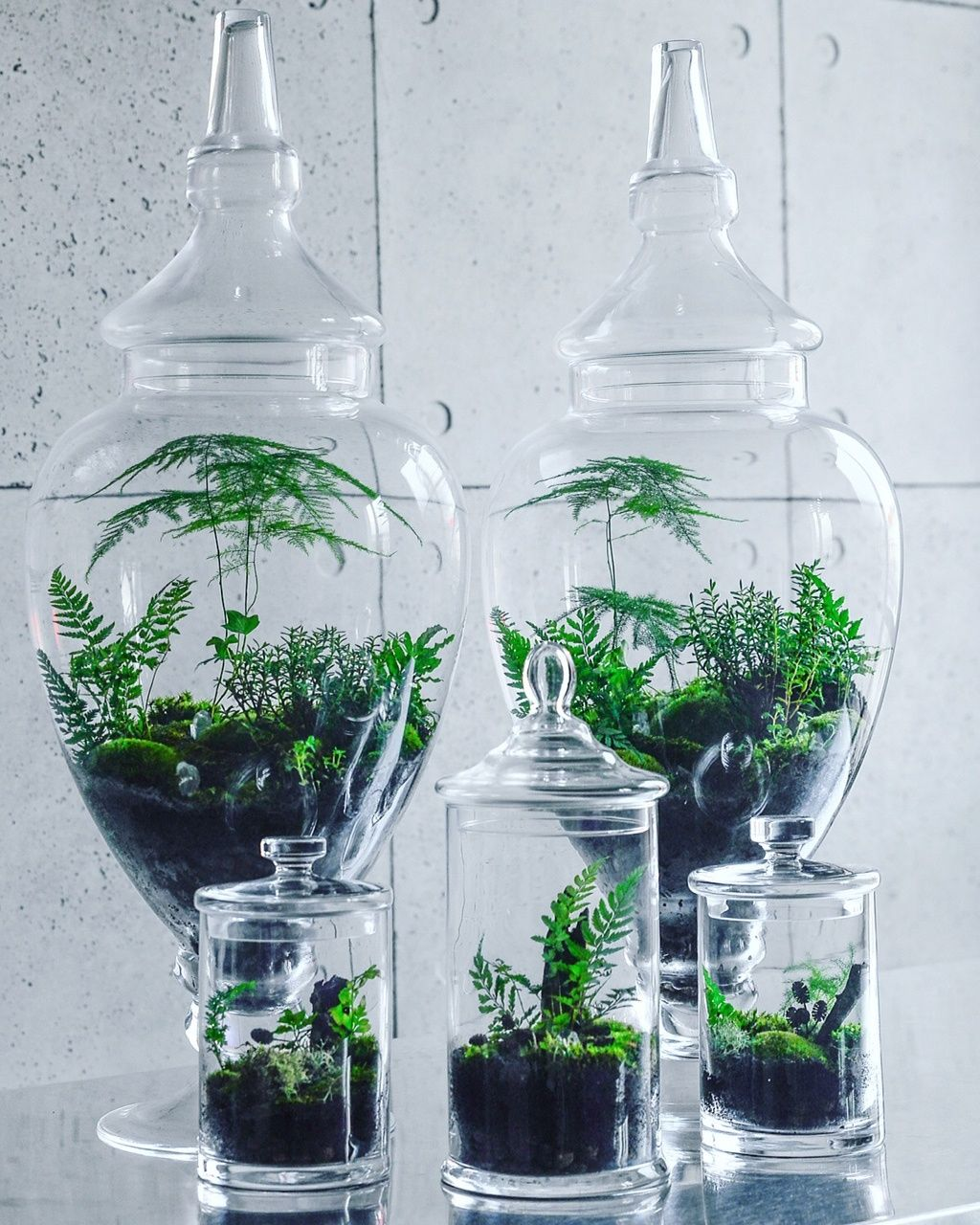 Pin by tojestmag on pomysły do domu pinterest plants and gardens
