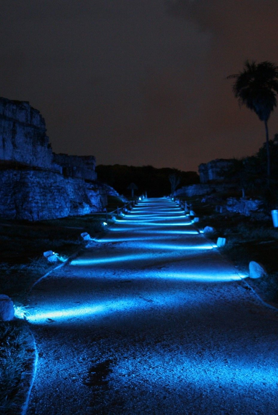 Landscape lighting-this is very cool people! | Trabajando ...