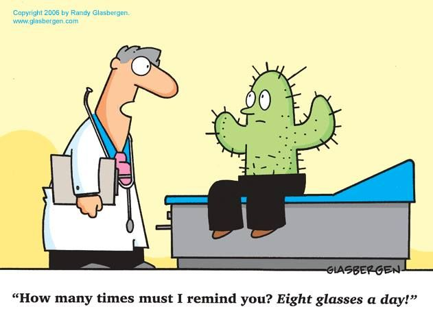 Image result for funny health cartoon