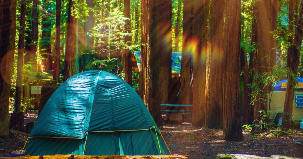 From Alabama To Wyoming Here Are The Top Rated Campsites In Every Us State Based On Ratings From Best Places To Camp California Beach Camping Camping Places