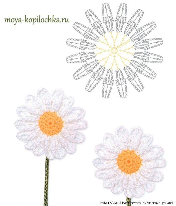 straordinaria raccolta di modelli di fiori e foglie | fiori frutti e ...