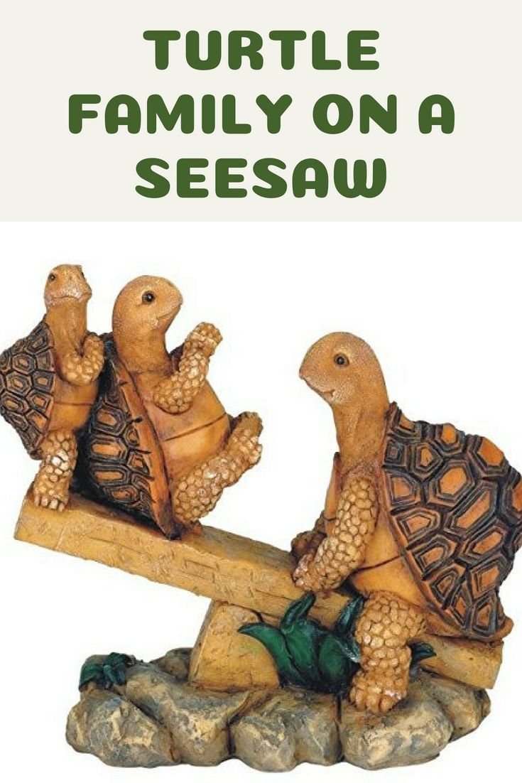 These turtles are really cute on their little seesaw.