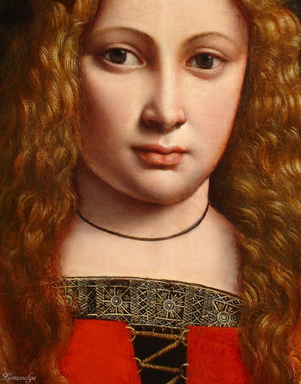 Boltraffio, Giovanni Antonio - Portrait of a Youth Crowned with Flowers