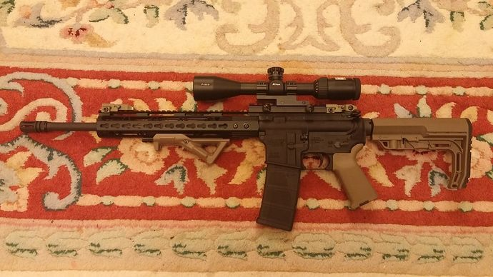 Ar15 and Variant Build Pic's - AR-15 Builders Forum | Member
