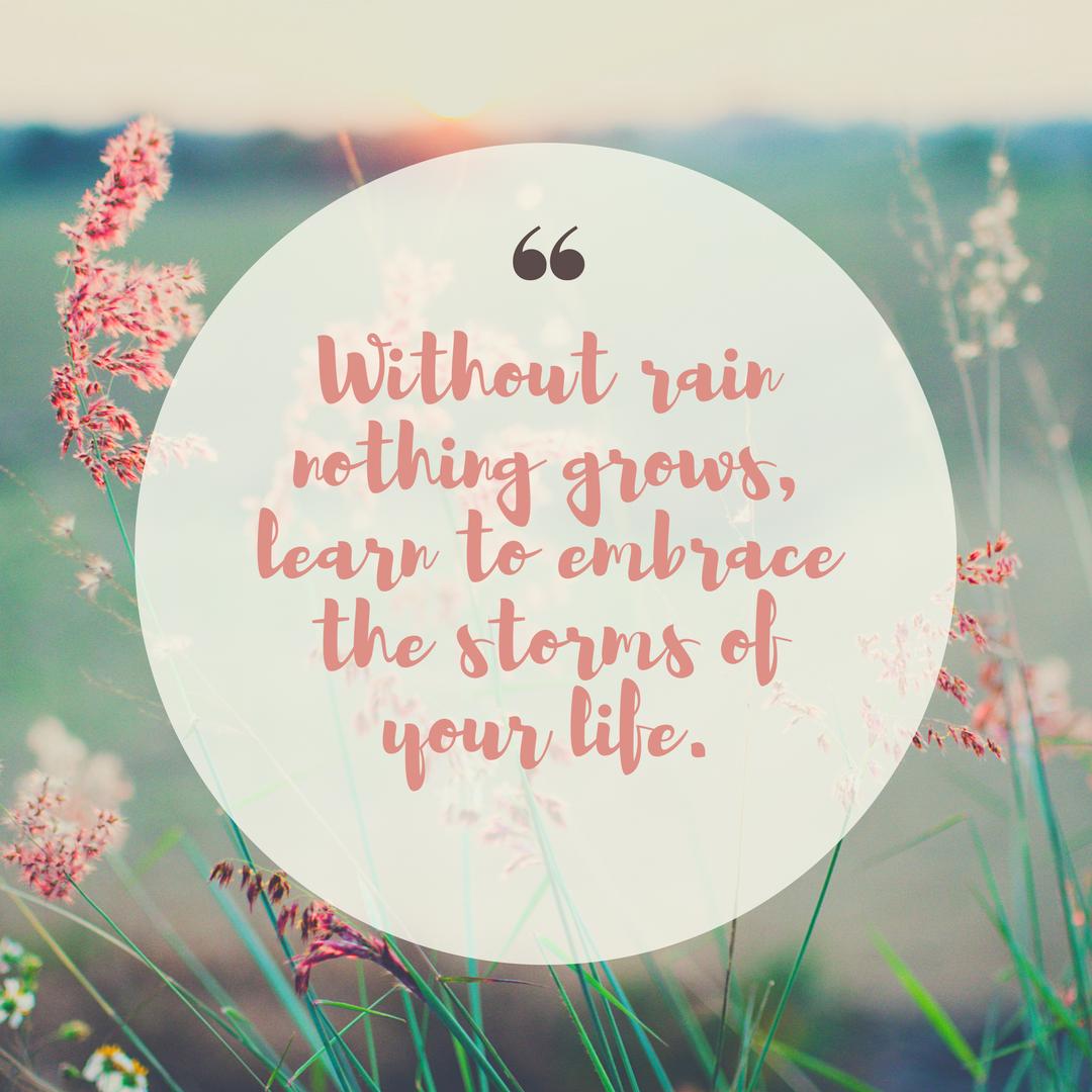 Wisdom Wednesday Quotes