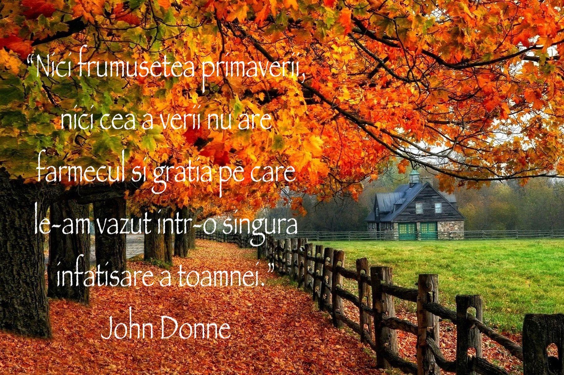 citate despre toamna Citate de toamnă, mesaje cu toamna, toamna și culorile ei minunate  citate despre toamna