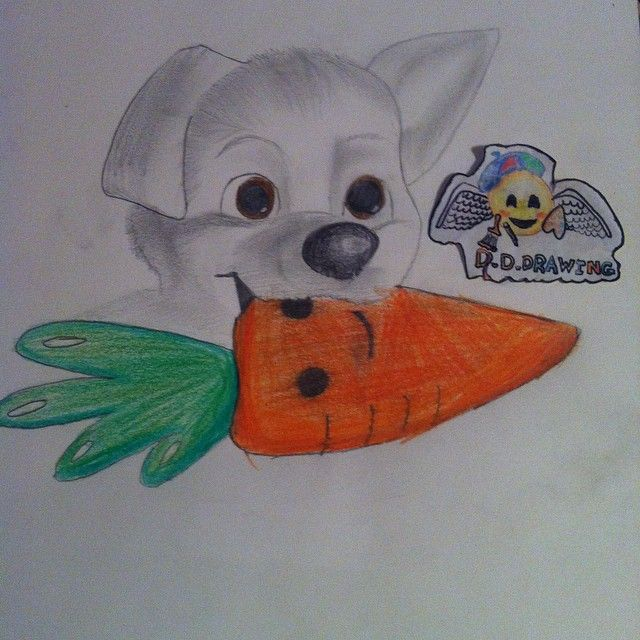 Hello guys  Who remembers this little buddy? (Bolt) Only 3 days before I am going to Bulgaria  Good night everyone  #draw #drawing #bolt #dog #cute #adorable #carrot