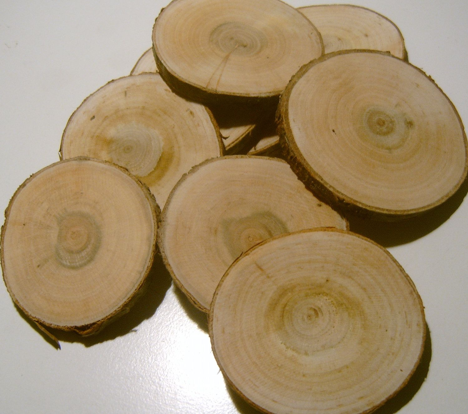 assorted blank tree branch slices to inch diy wedding
