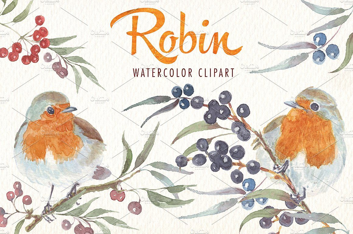 Winter birds watercolor clipart Predesigned images ideal for products such as invitations posters  greeting cards t-shirts scrapbooking...
