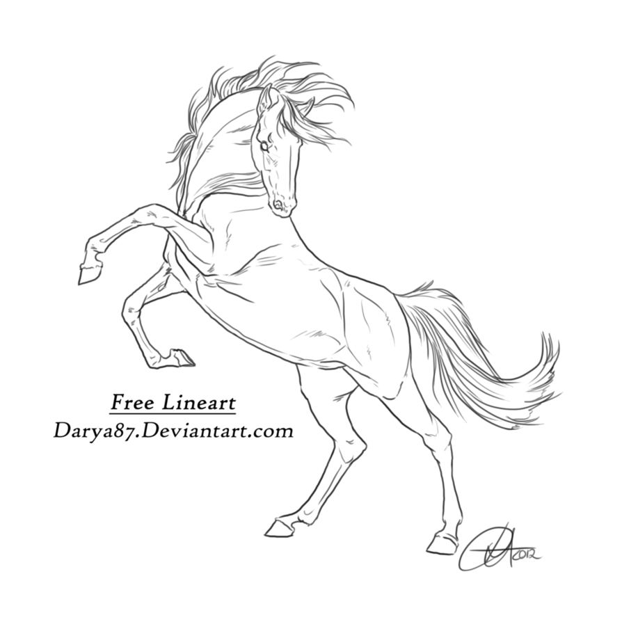 FREE Lineart - Rearing by Darya87 | Horse rearing, Horse ...