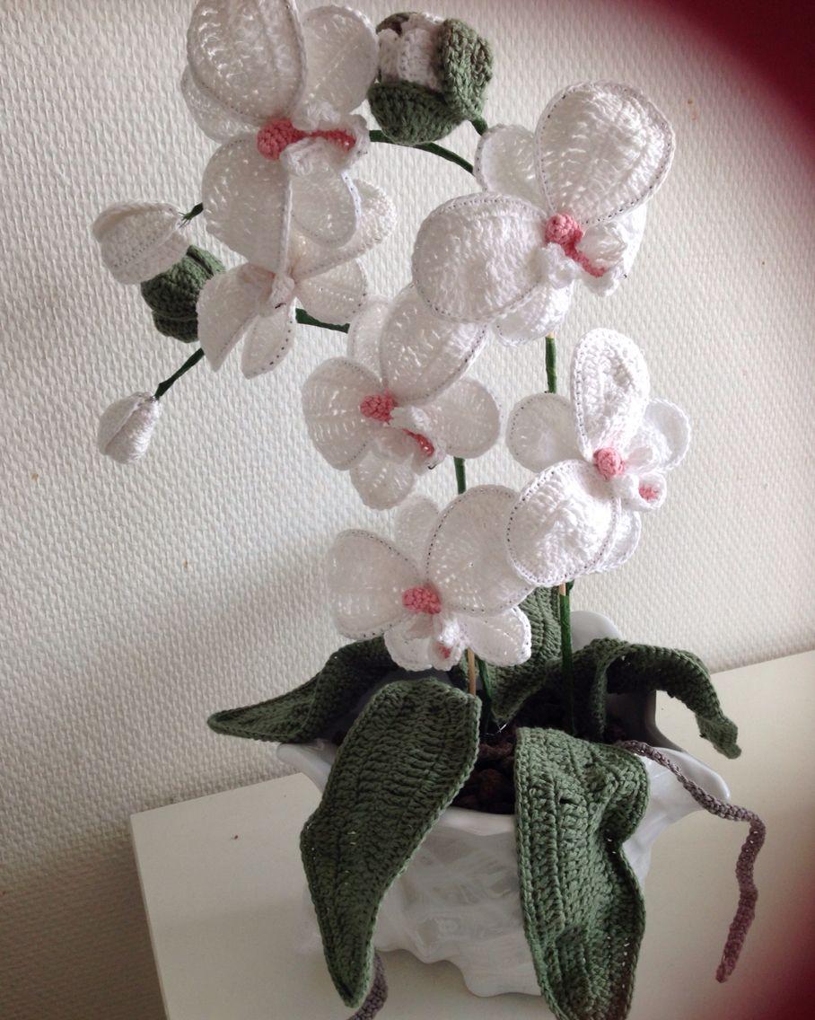 Hæklet orkide   Handavinna - blóm   Pinterest   gehäkelte Blumen ...
