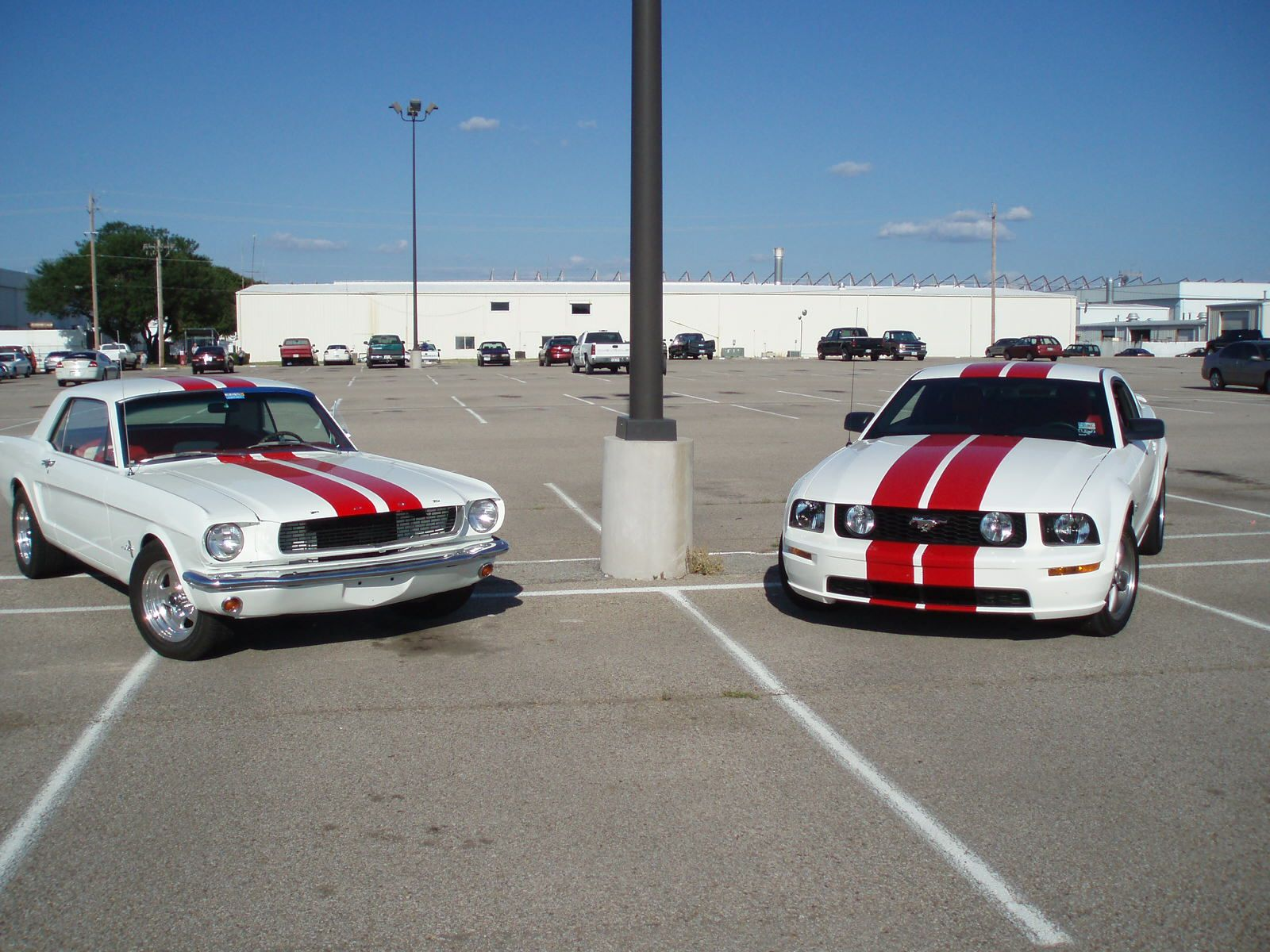 Mustang Old And New Jay Burt Yankee Dawg You Die Concept Art Mustang Old New Mustang 2010 Mustang Gt