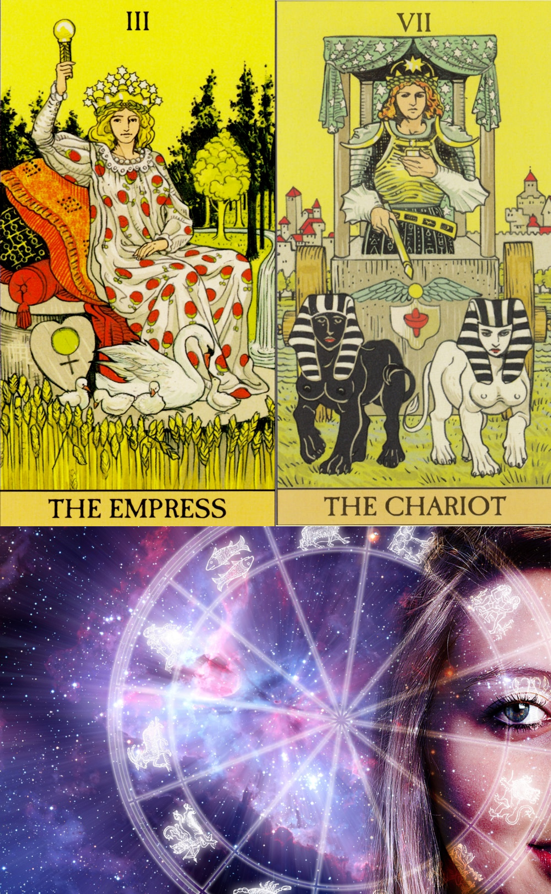 one question tarot, lotus card reading and free divine tarot
