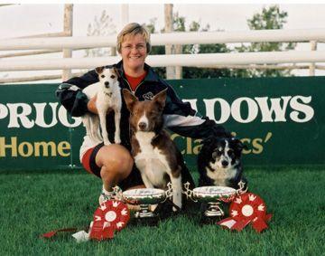 Say Yes Dog Training Susan Garret Dog Training Dogs Dog Store