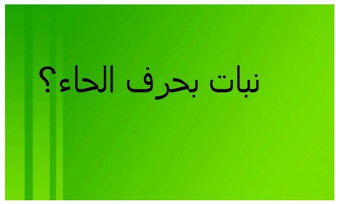 تعرف وتعلم أسماء نبات بحرف الحاء Calligraphy Arabic Calligraphy