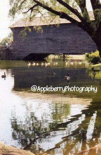 8x10 Fine Art, Covered Bridge with ducks   AppleberryPhotography - Photography on ArtFire