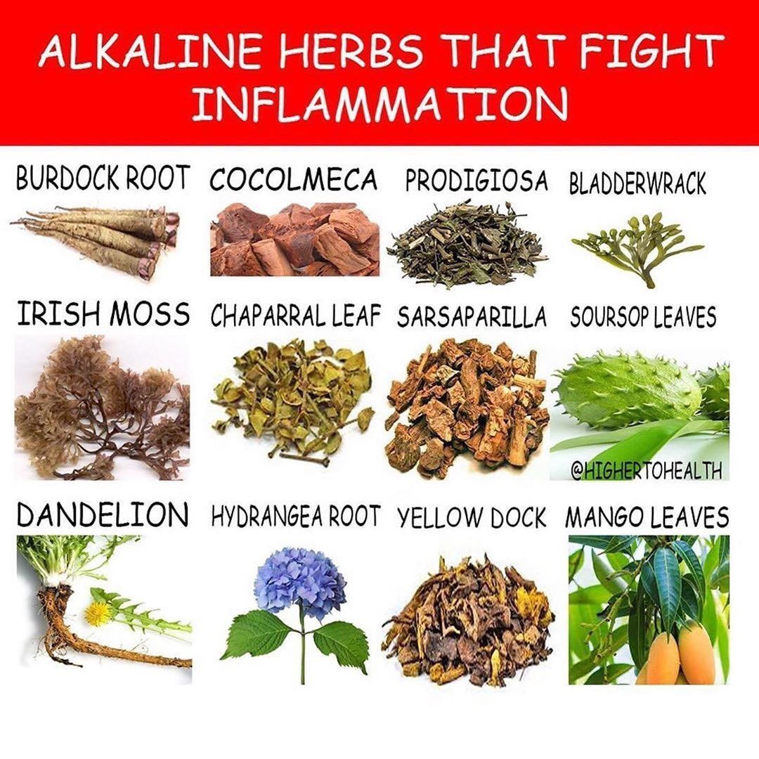 Posted @withrepost • @highertohealth Switch to an alkaline lifestyle today‼️ If you would like to purchase herbs to help fight inflammation plus more check out our Alkaline herb shop at the link in the bio or visit  _ _