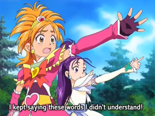 Saki and Mai Anime, Favorite character, Pretty cure
