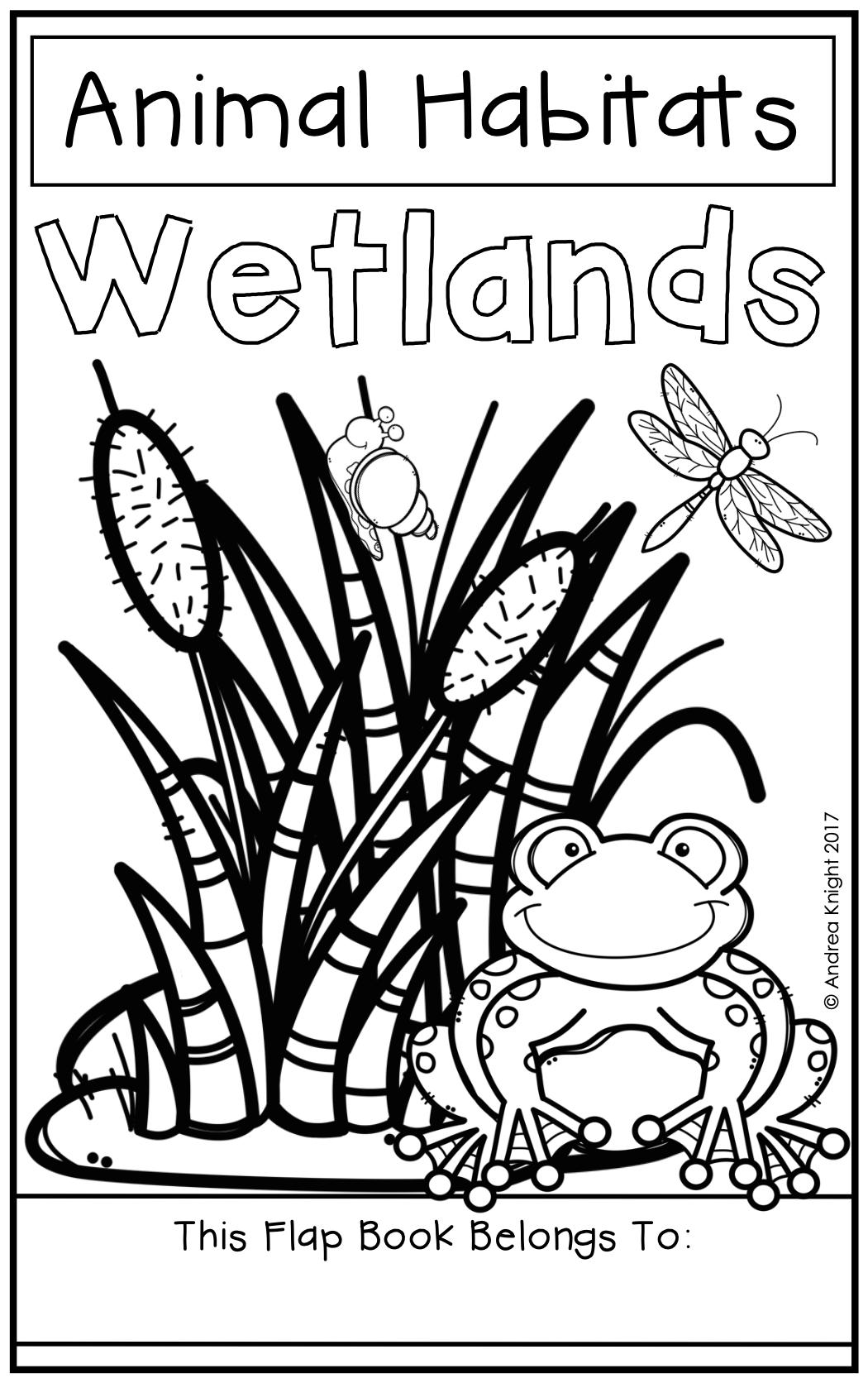 Animal Habitats Wetlands A Flap Book Project For Grades