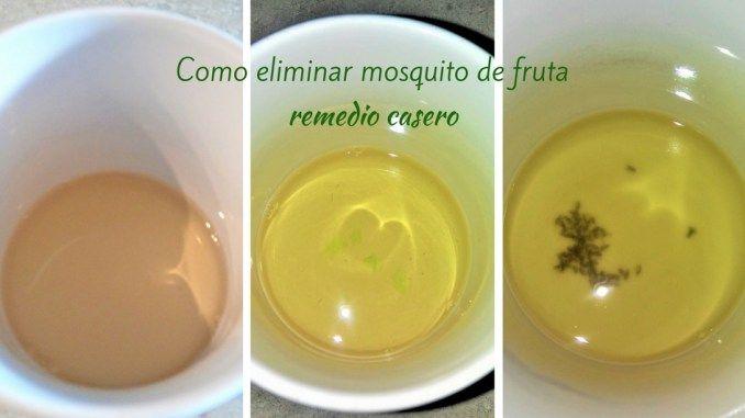 Cómo Eliminar Mosquito De Fruta I Food Mom Moscas De La Fruta Como Eliminar Mosquitos Remedios Para Mosquitos