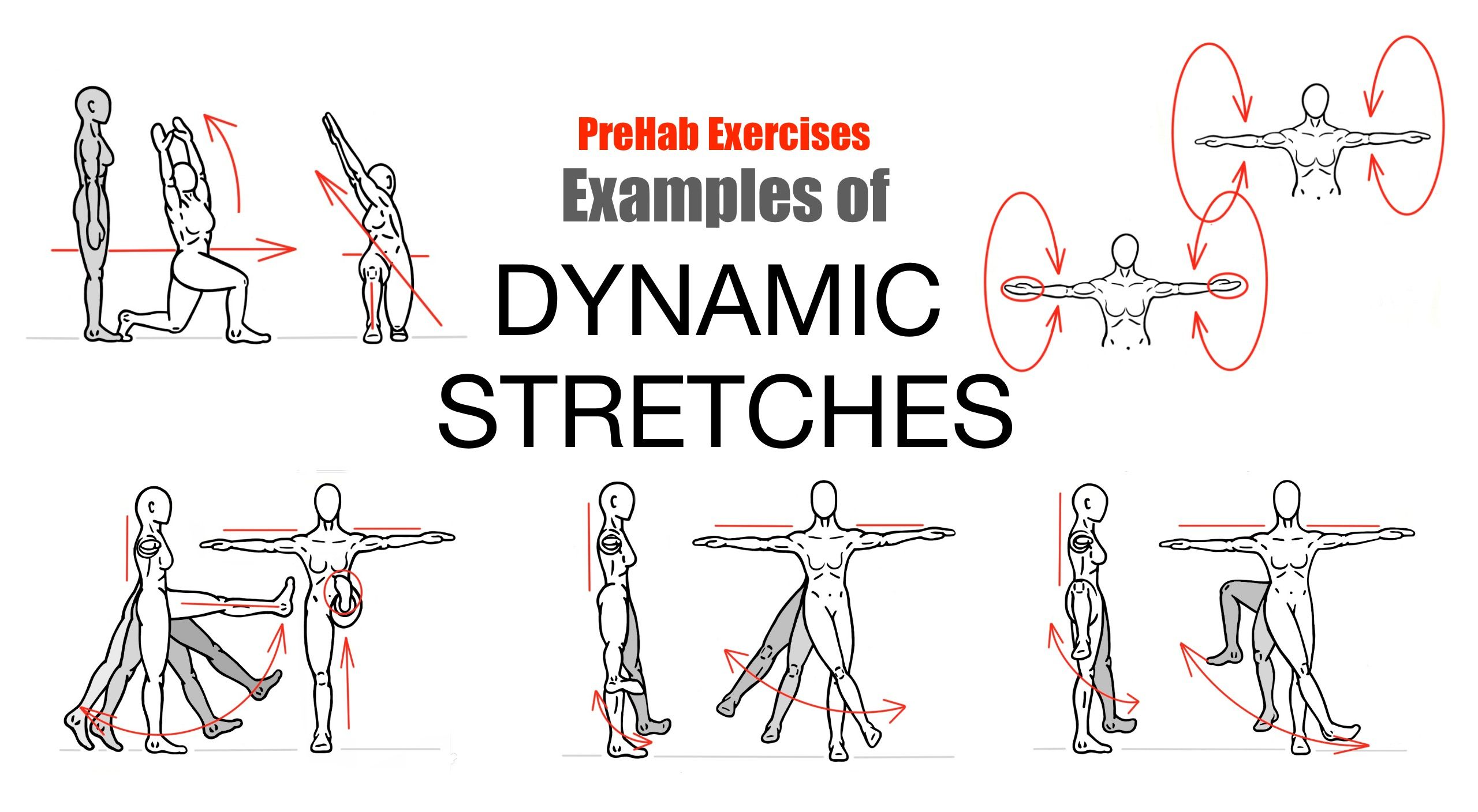 the perks of dynamic stretching Extra perks for people who participate in sports requiring arm strength and flexibility if you have chose dynamic arms stretches as a part of your warm-up.