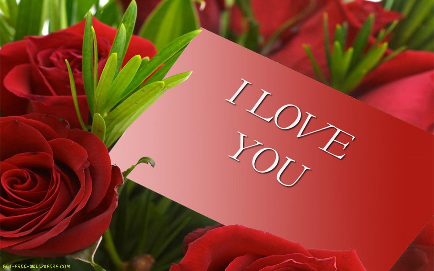 Red Roses Background Hd Desktop Wallpaper Widescreen High Hd