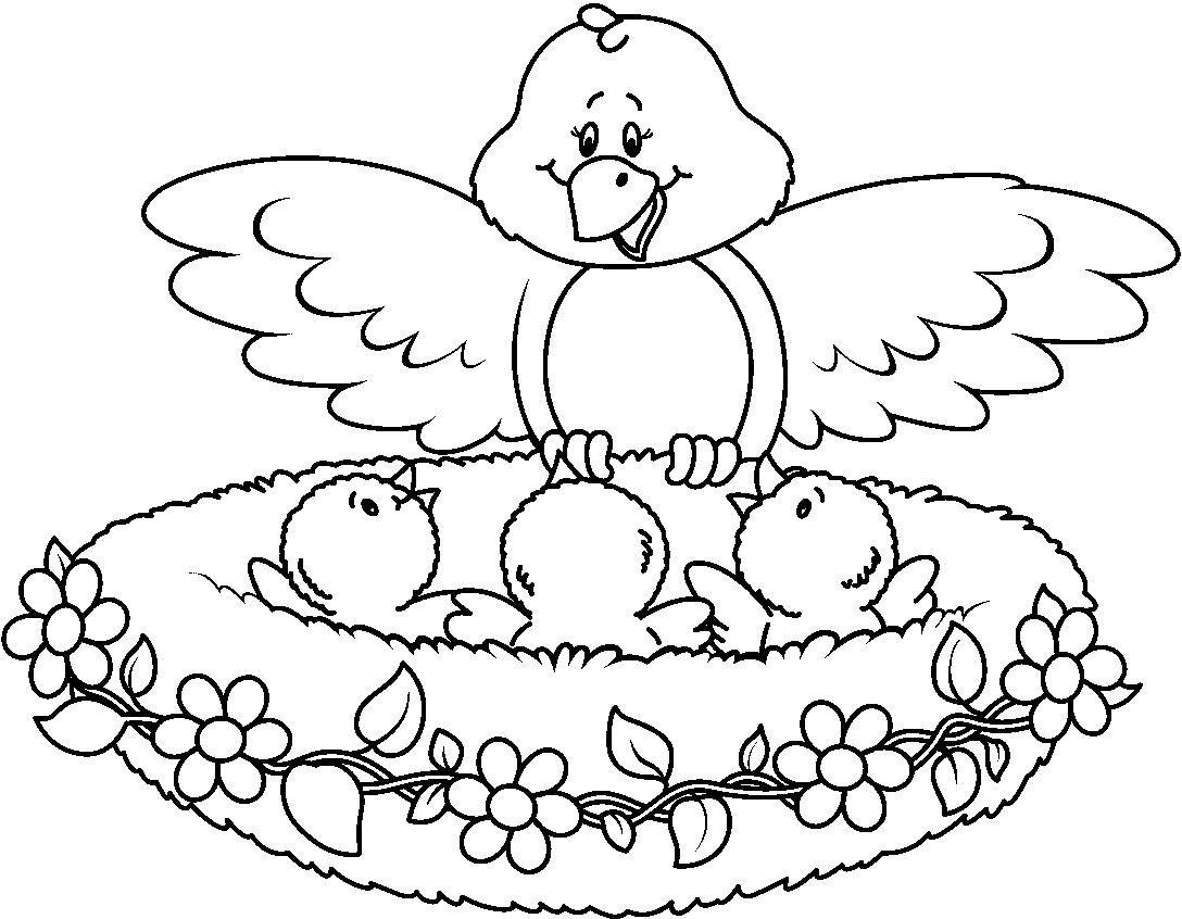 Birds In Nest Animalitos Para Colorear Pajaros Para Colorear Libro De Colores