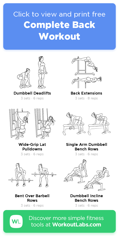plete Back Workout · WorkoutLabs Fit Workout