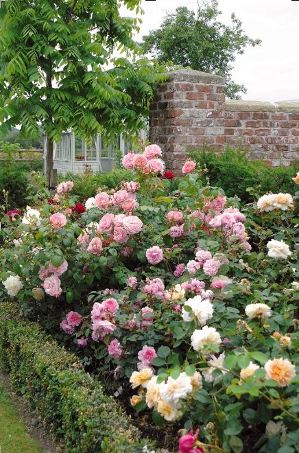 11 Ways To Create A Charming Country Cottage Style Garden Rose Garden Design Cottage Garden Country Garden Decor