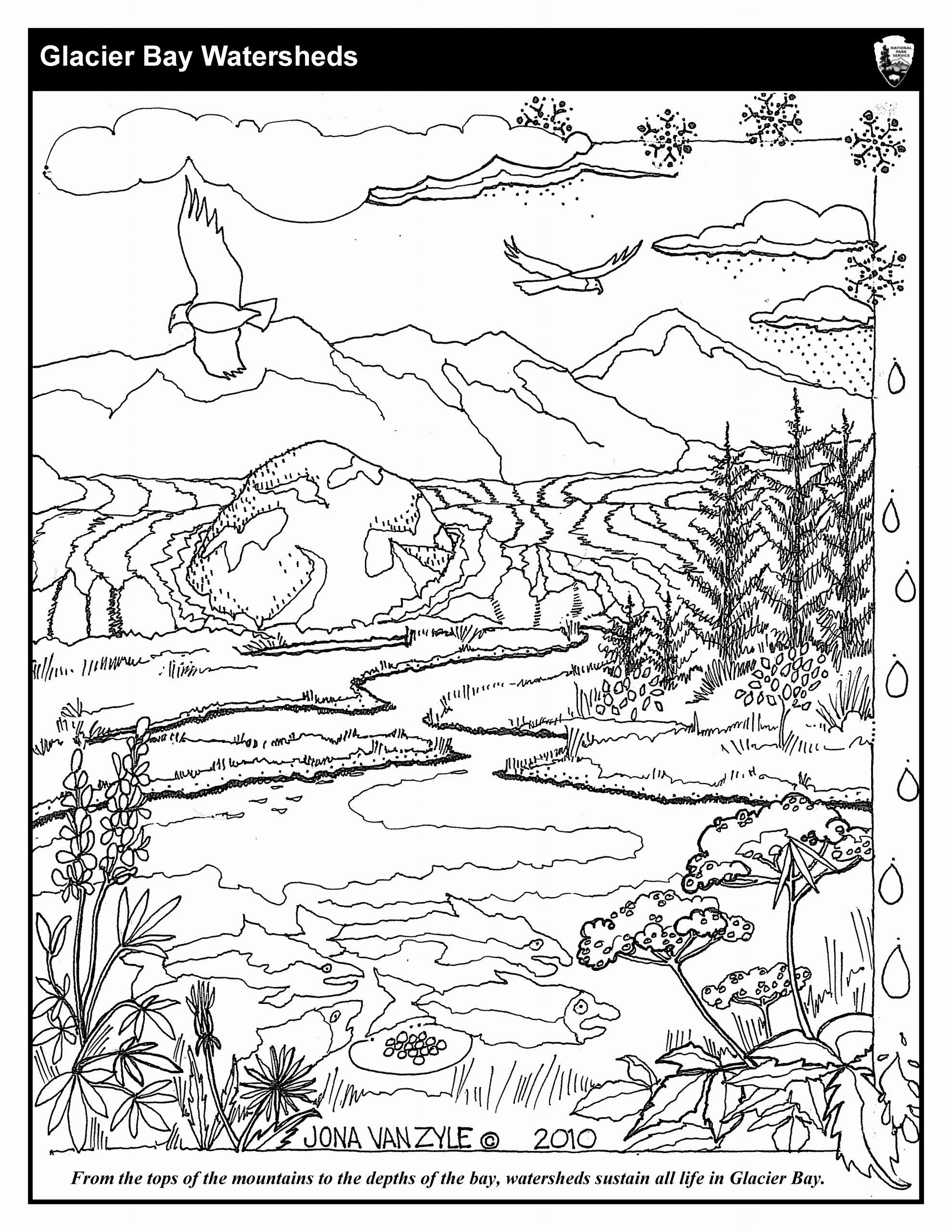 Coloring Pages Ecosystem Animals Elegant Coloring Sheets