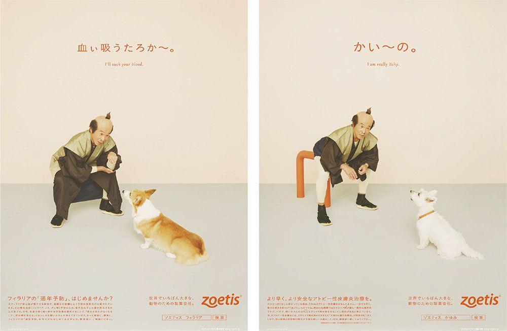 間寛平のギャグがコピーに ブレーンデジタル版 ゾエティス ジャパン 犬のかゆみ 犬フィラリア症の疾患 予防 啓発 新聞広告 ギャグ 新聞 広告 寛平