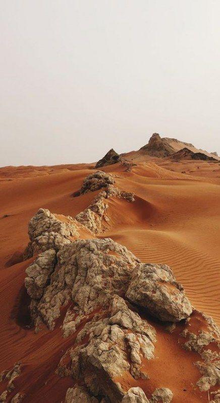 New Landscaping Desert Earth 19 Ideas Landscaping Paisaje De