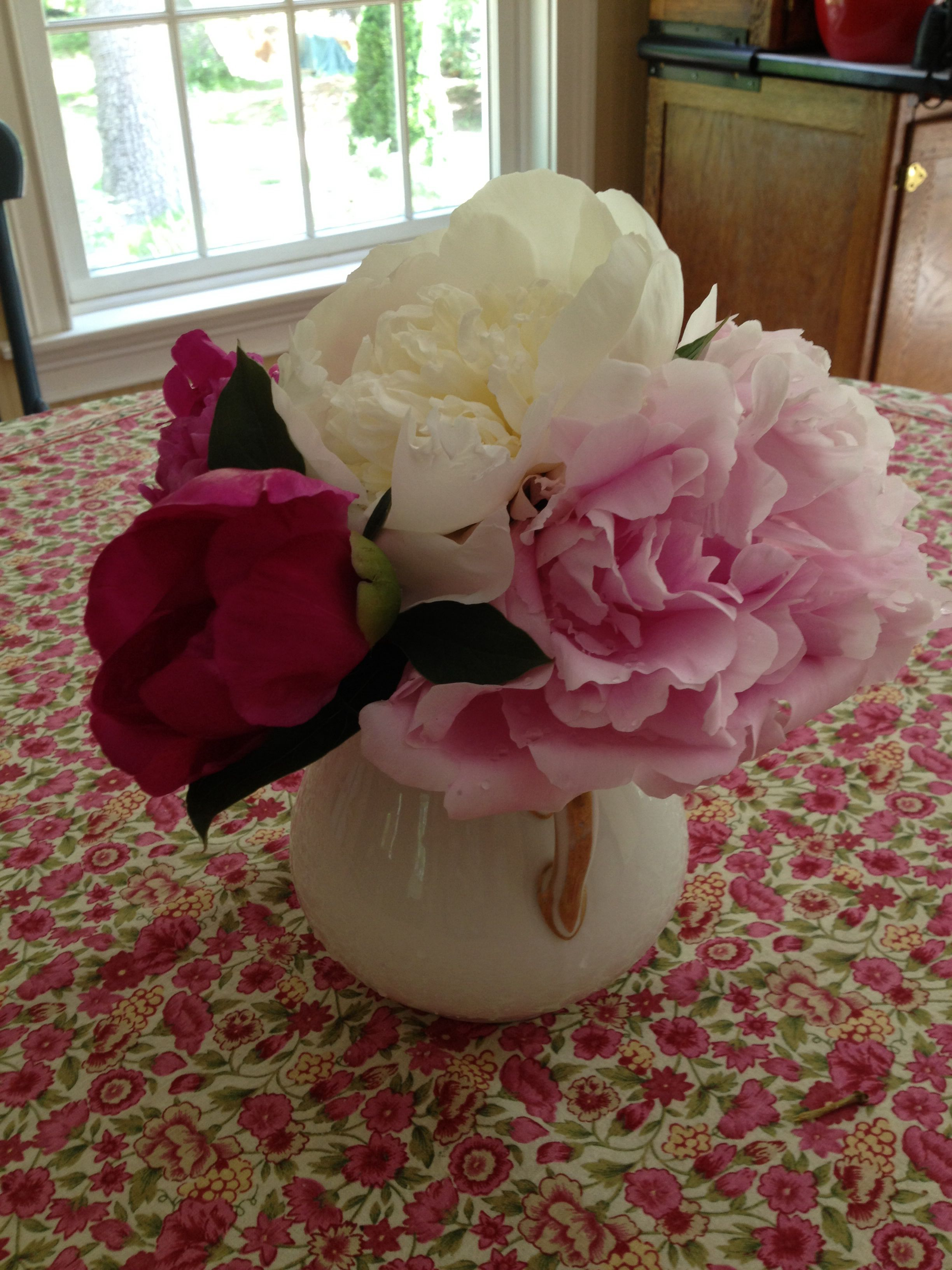 Peonies on pink table cloth
