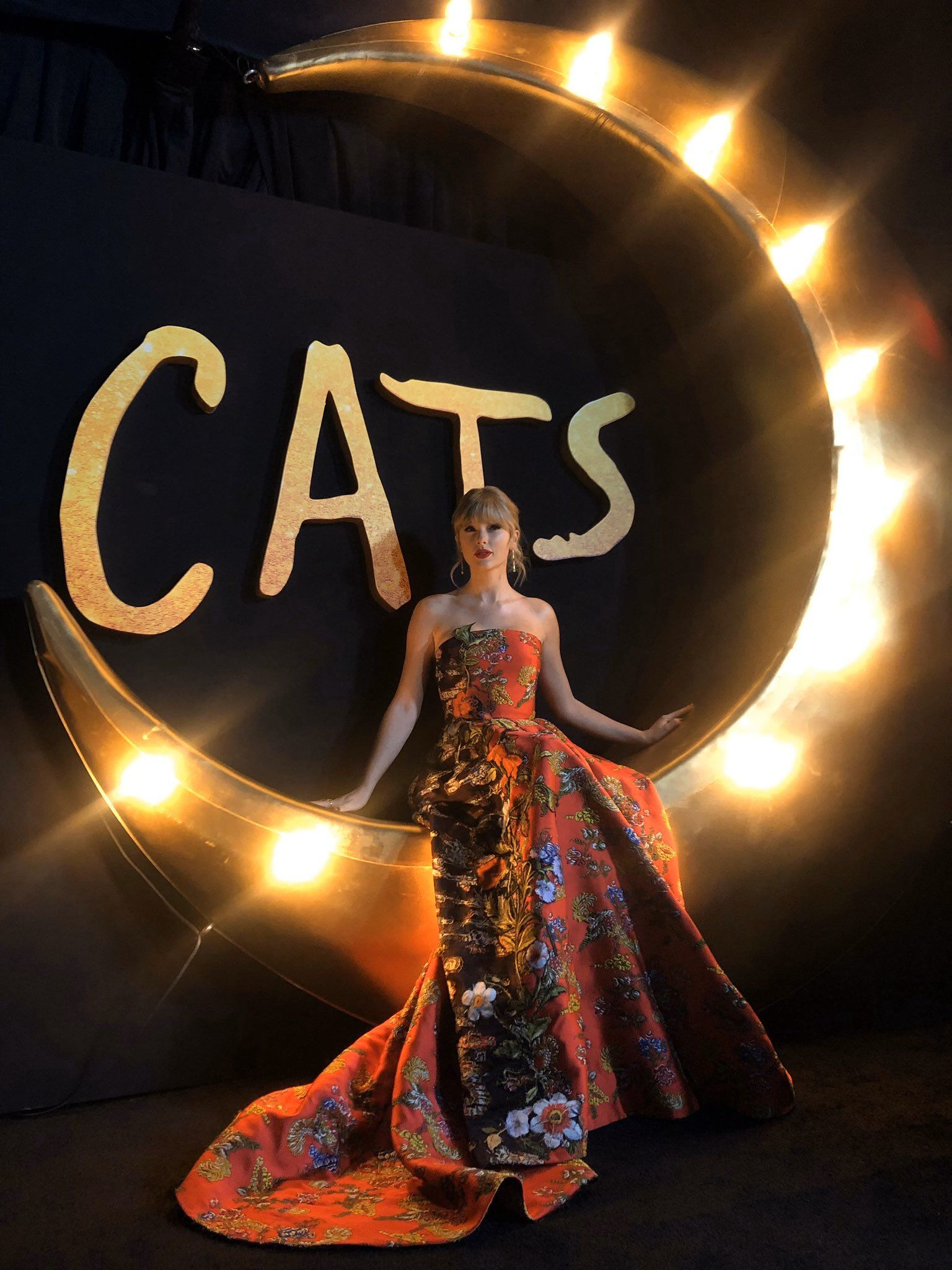 Taylor Swift News on in 2020 Taylor swift cat, Taylor