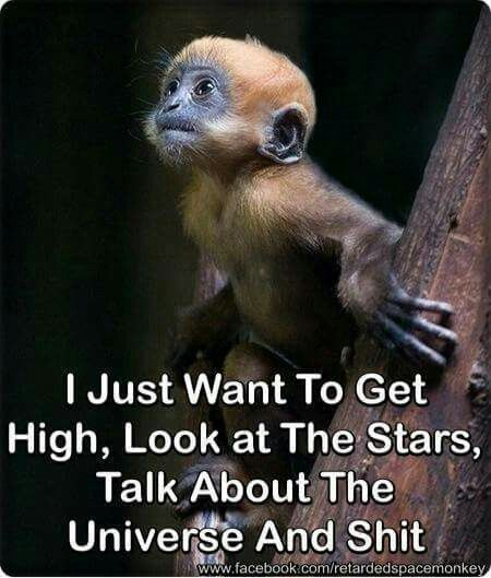 Pin By Amber Maxwell On Pot Cutest Animals On Earth Animals Cute Animals