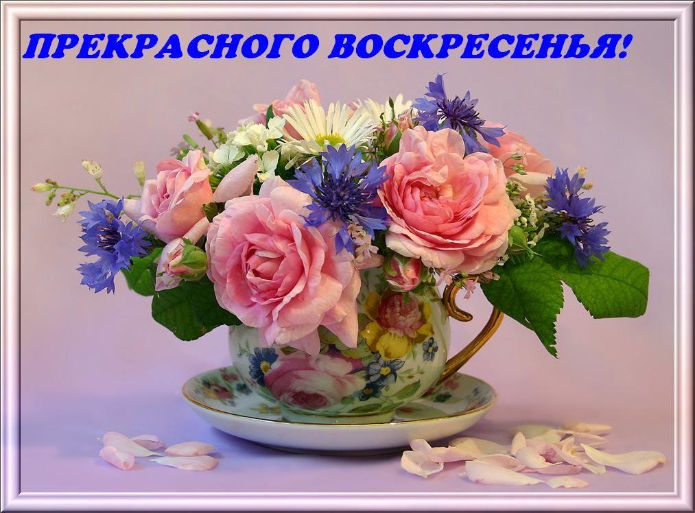простые понятные картинки воскресного дня в цветах даже