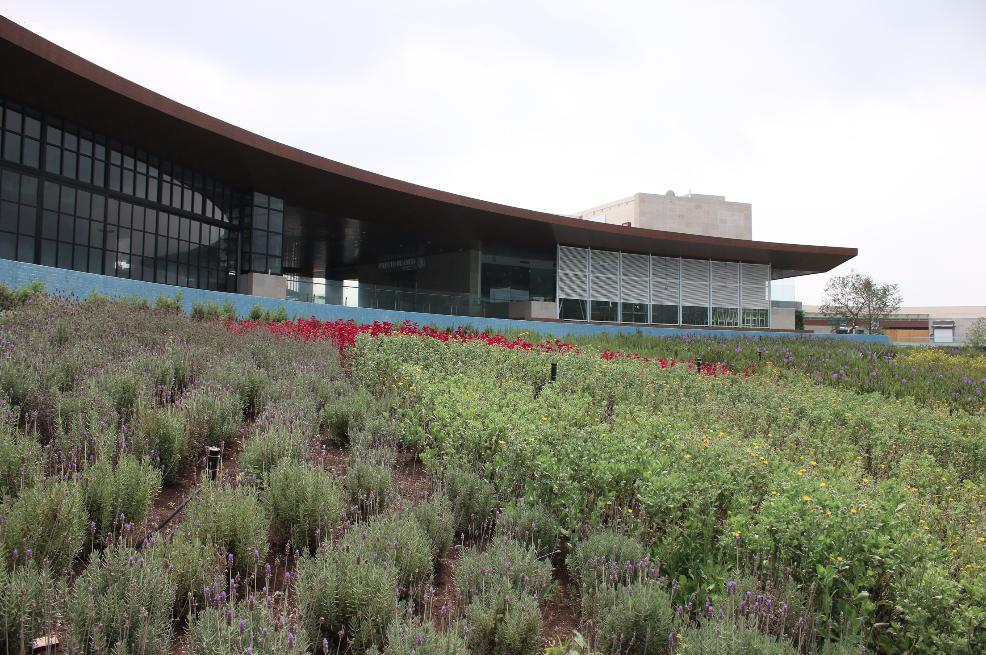 Diseño de paisajes, jardines y áreas verdes. #transformandoespacios ...