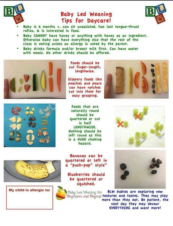 Pin by Brittney Zahn on Baby foods | Baby led weaning ...