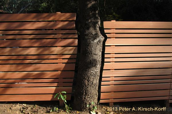 Horizontal REdwood Fence Tree Cutout For Growth