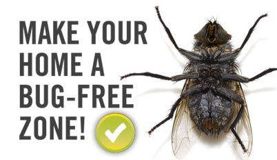 Make Your Home A Bug Free Zone Bug Free Insect Control Make It Yourself