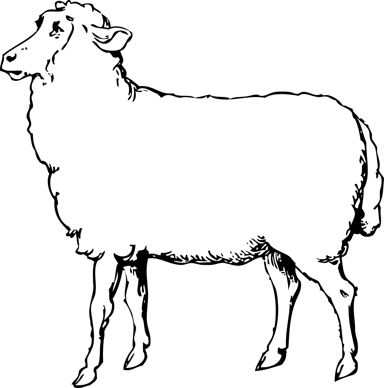 Lamb Clipart Black And White Sheep 1 Black White Line Art