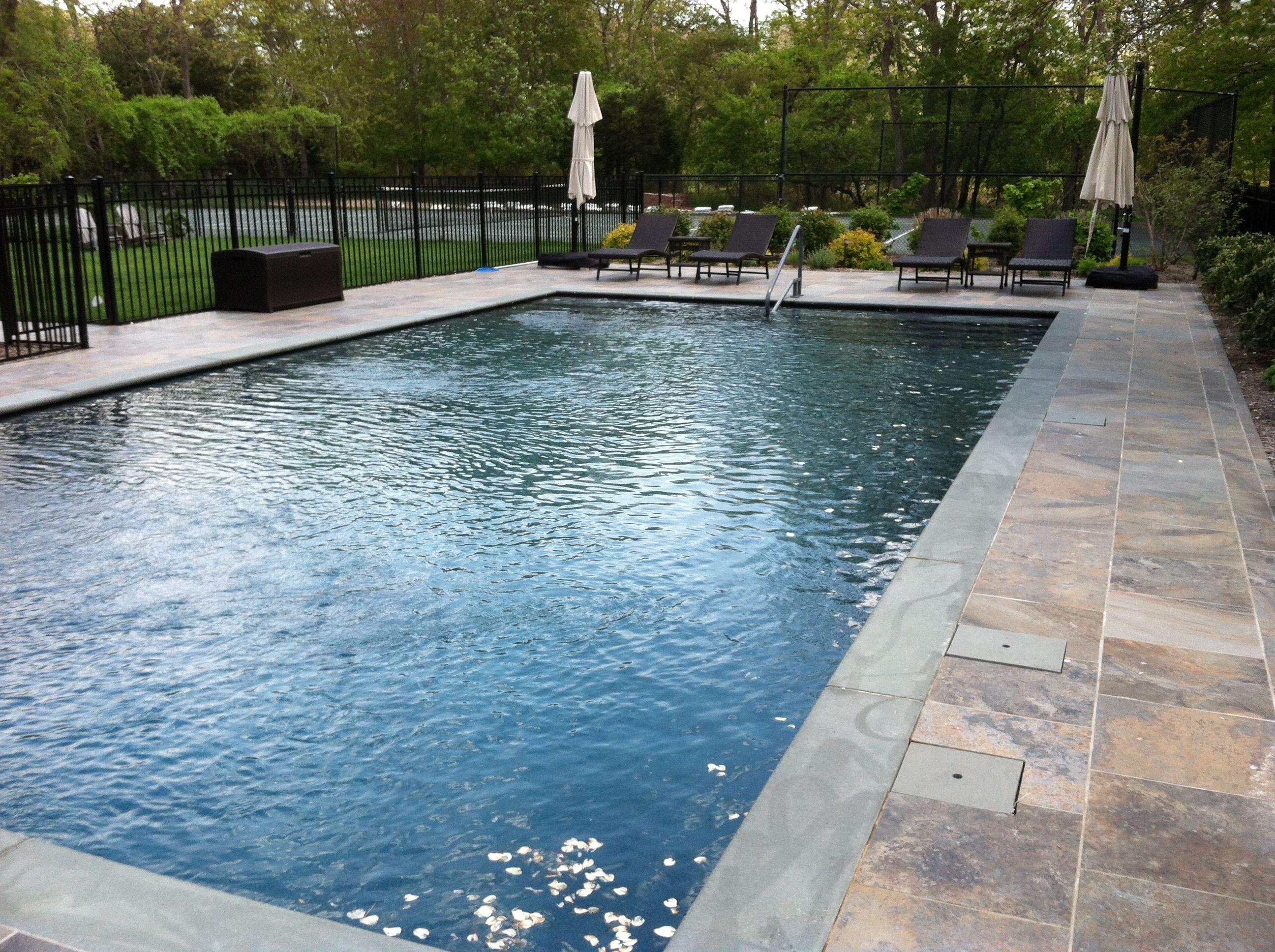 20 X 40 Swimming Pool Google Search Rectangle Swimming Pools Inground Pool Designs Gunite Swimming Pool
