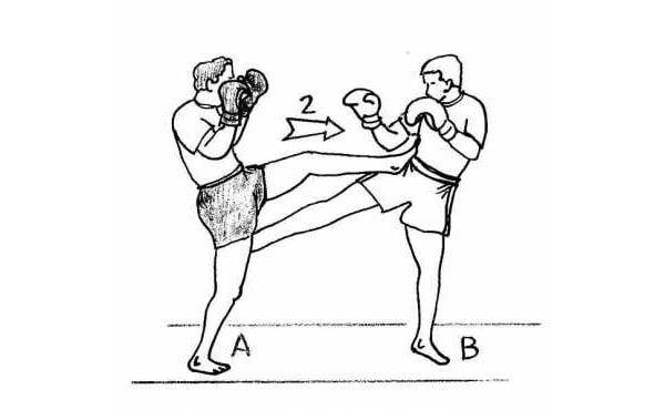 Muay Thaï : les techniques de la boxe thaï avec