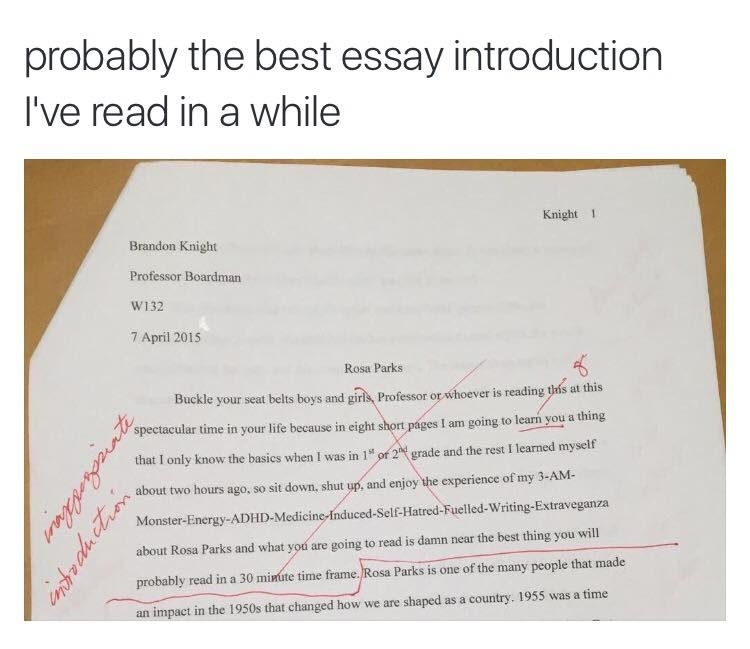 Sample Descriptive Essay About A Place  How To Check An Essay For Plagiarism also Honor Courage And Commitment Essay How To Start An Essay  Funny  Good Essay Tumblr Funny Funny Animal Essay