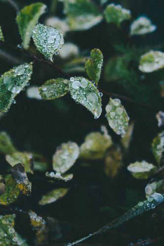 explore - Bethany Marie Photography
