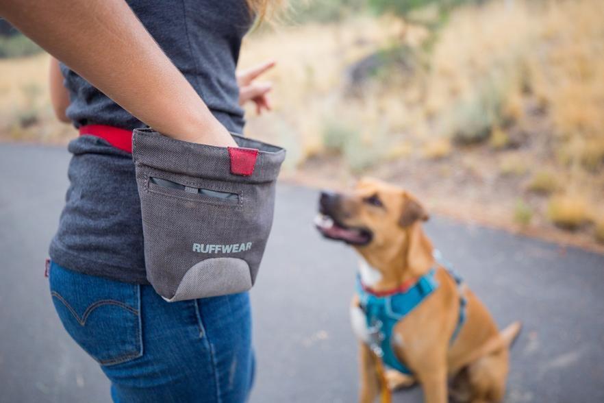 Treat Trader Bag Dog Treat Bag Free Training Waterproof Liner