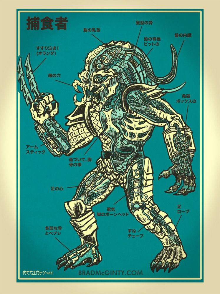 movie predator diagram image of anatomy of the predator print brad mcginty apex predator diagram