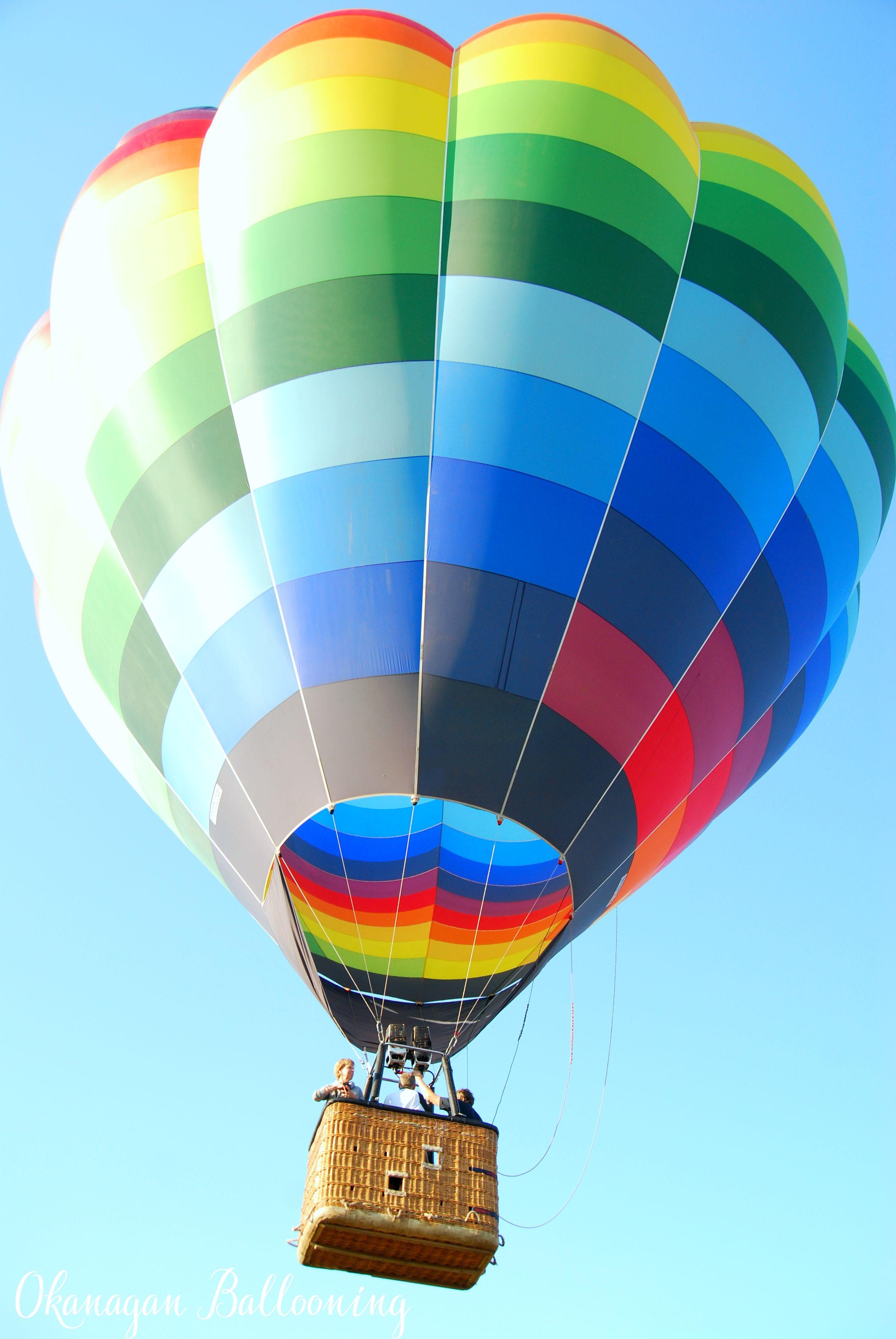 950x1534 Colorful Hot Air Balloons Festival Wallpaper Air Balloon Hot Air Hot Air Balloon