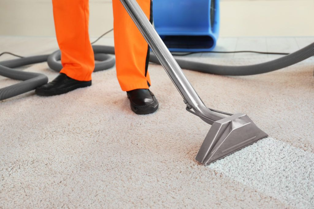 There Are Plenty Of Cheap Products And Carpet Cleaning