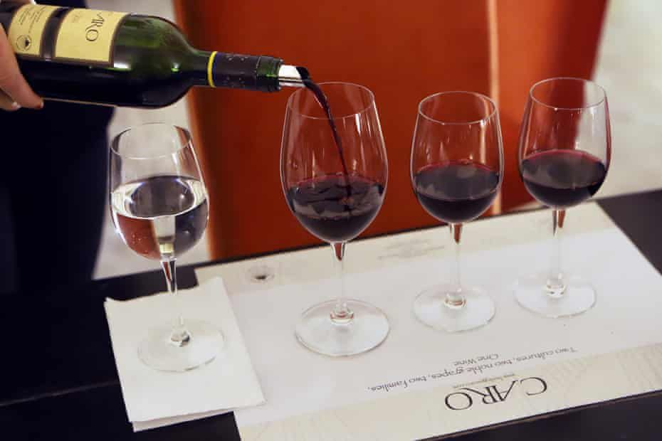 The Argentinian red wine that conquered the world | Fiona Beckett